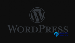 How to Add Social Media Embeds To Articles In WordPress