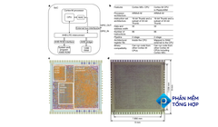 Why Is ARM Developing a Flexible Processor?