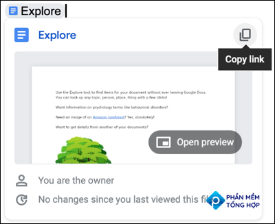 Click Copy Link in the Smart Chip for a file