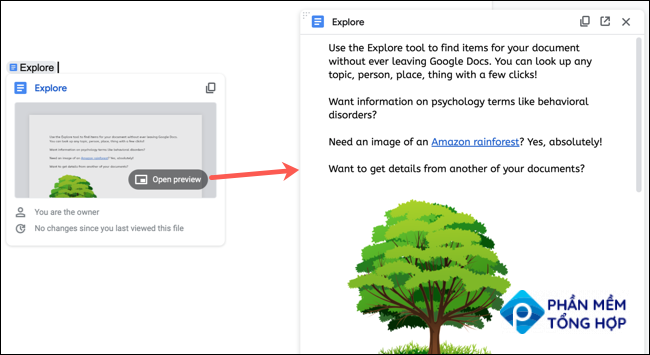 Preview a document in Google Docs