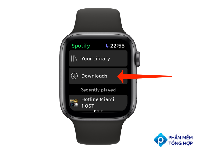 """Tap """"Downloads"""" to check which songs or podcasts have been downloaded on Spotify's Apple Watch app."""