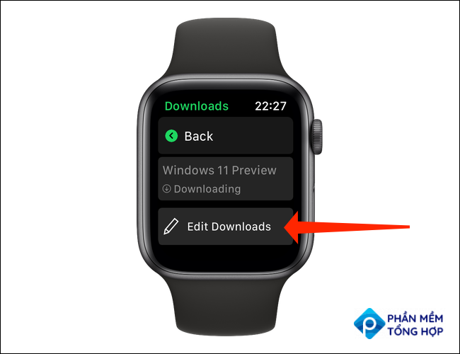 """On the """"Downloads"""" page in Spotify for Apple Watch, you can tap """"Edit Downloads"""" to stop downloading any of the items in queue or to remove a downloaded file from your Apple Watch."""
