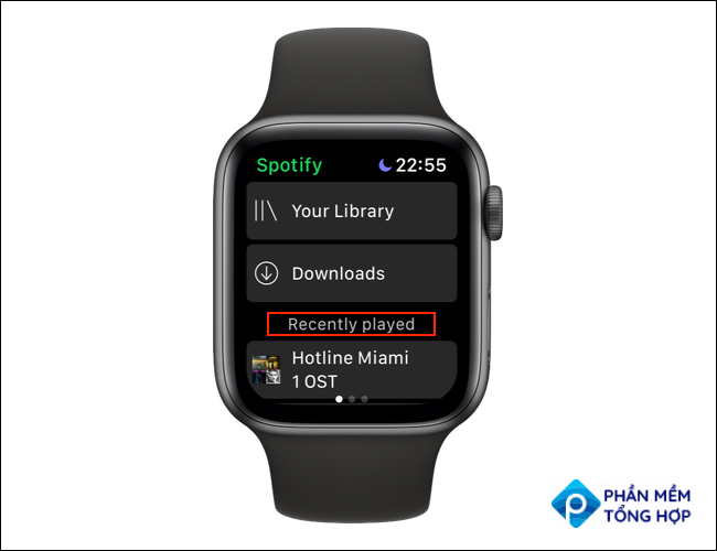 """Open the Spotify app on Apple Watch and swipe left till you are on the """"Recently Played"""" screen."""