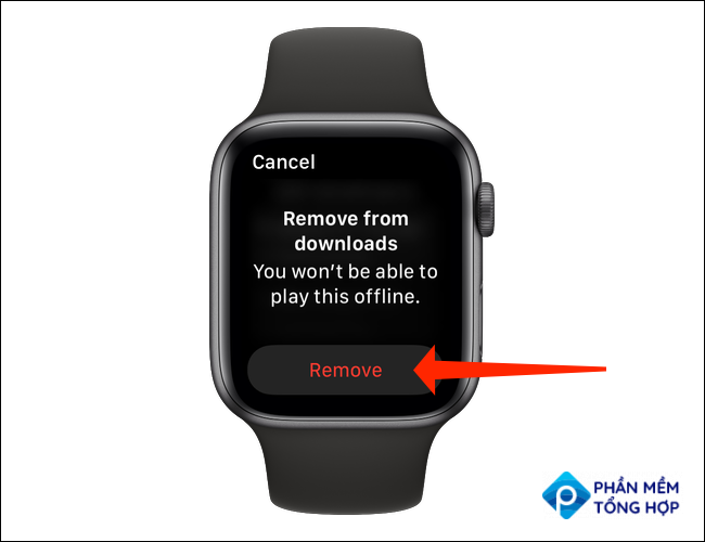 """Select the song or podcast you wish to delete and then tap """"Remove"""" in the Downloads page in Spotify's Apple Watch app."""