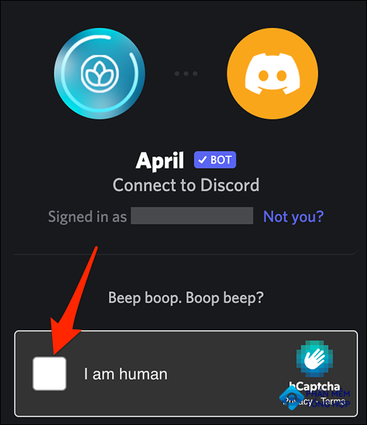 Confirm the captcha on Discord.