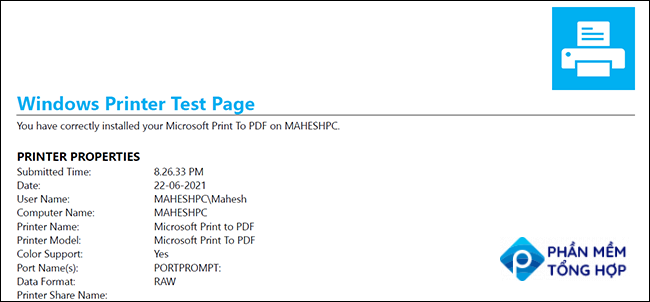 Windows 10's test page for printers.