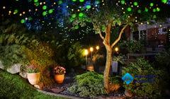 What Is a Moon Garden?