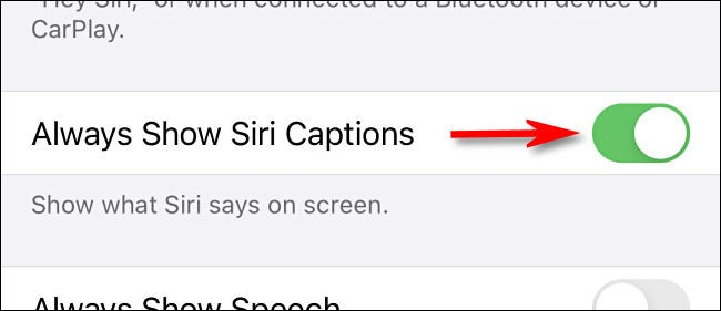"""Turn on the switch beside """"Always Show Siri Captions."""""""