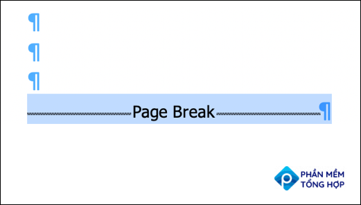 Select the section or page break in the Word doc.