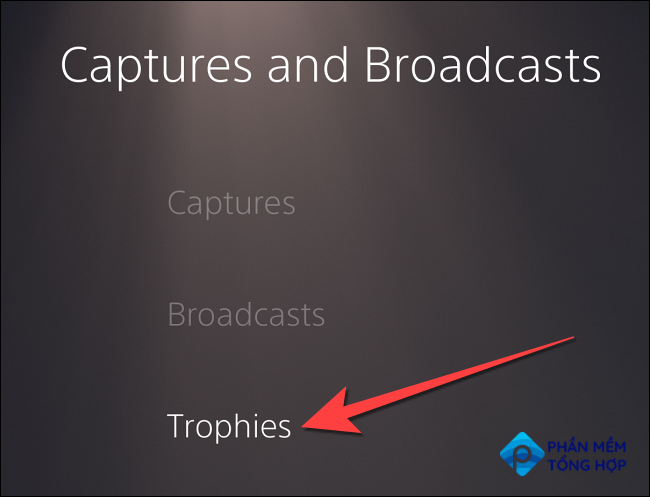 """Select """"Trophies"""" from the left column."""