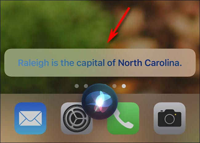 WIth captions turned on, you'll see what Siri says on your screen.
