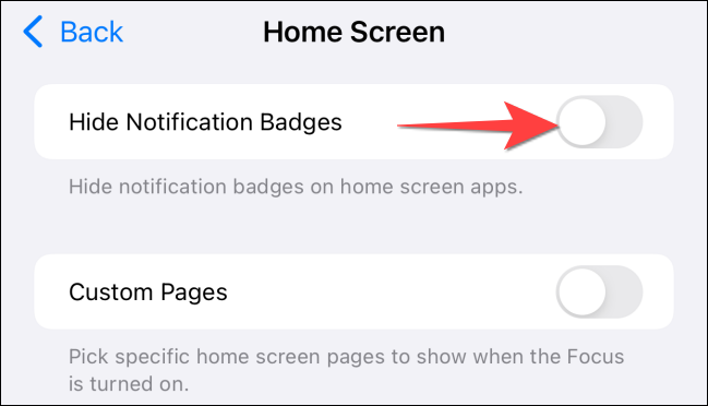 """Toggle on the """"Hide Notifications Badges"""" switch."""