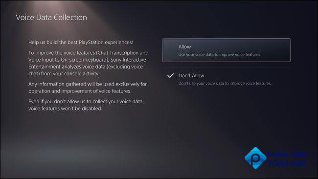 """""""Voice Data Collection"""" PS5 privacy settings"""