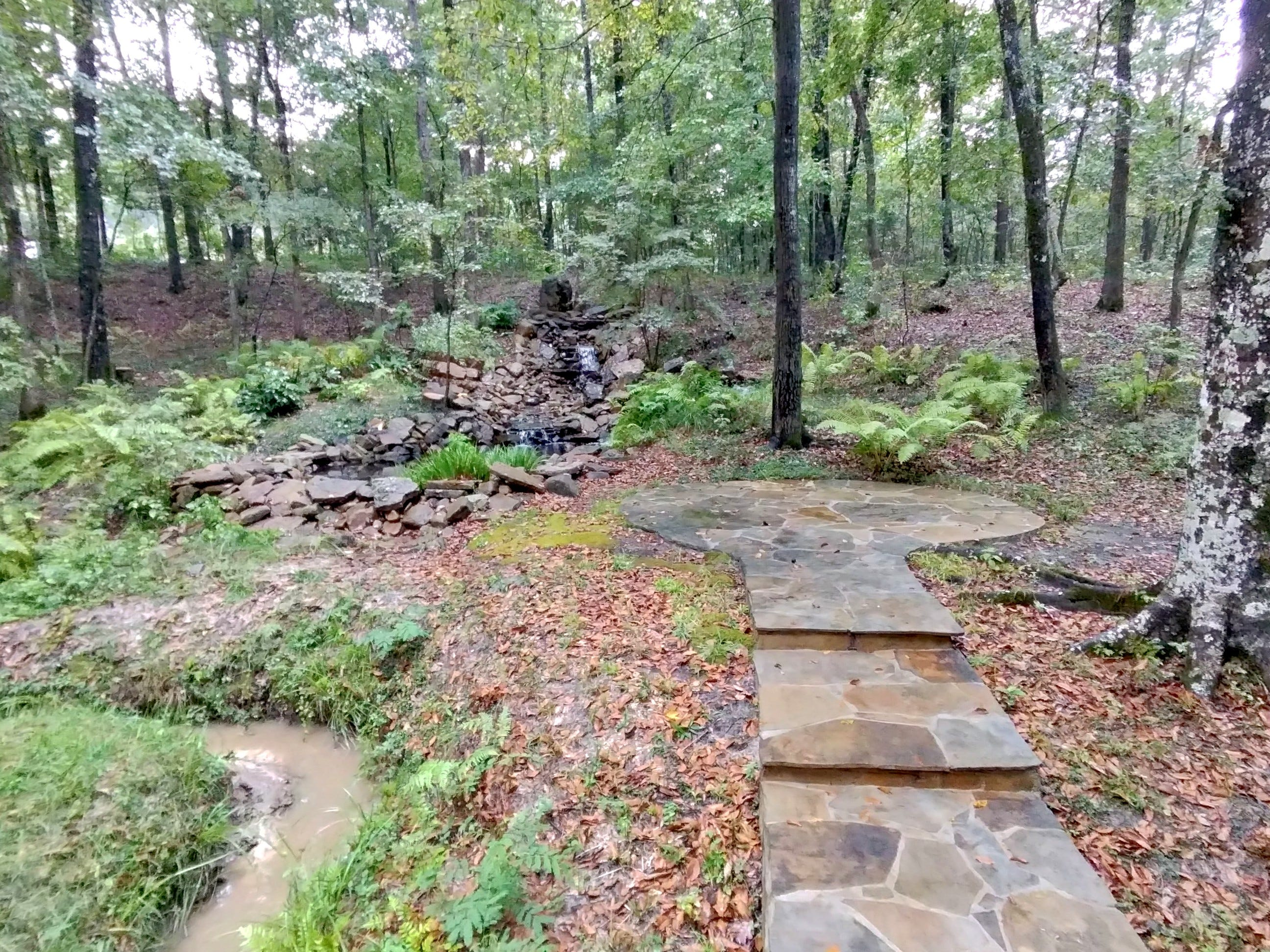 A stone walkway in the woods