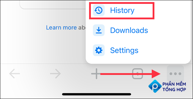 History in iPhone Chrome settings