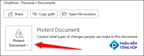 Click Protect Document in the Info section.